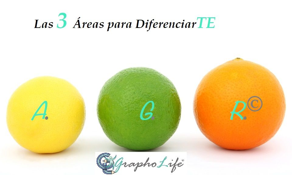 3 Áreas de adaptación, diferenciación y estrategia